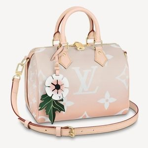 SOLD Louis Vuitton By the Pool Speedy 25 Bando